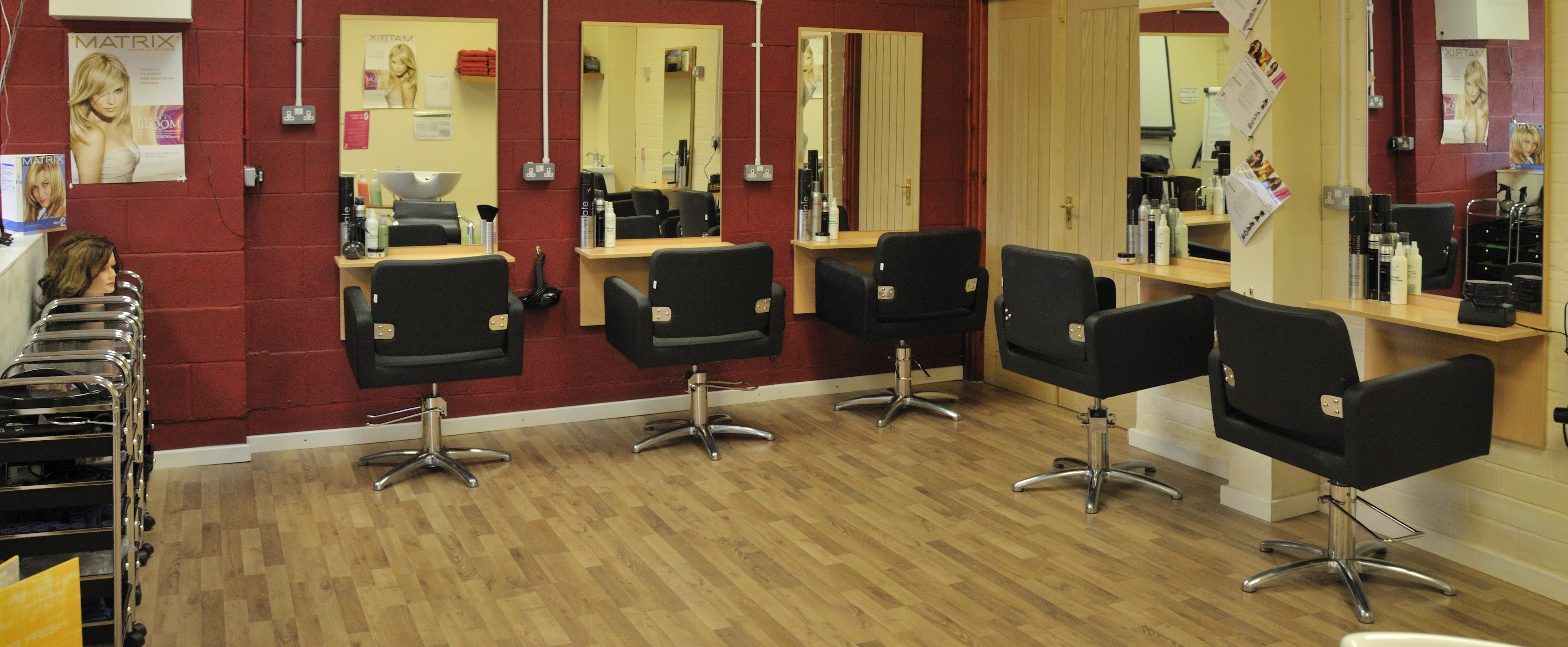 Fully Functional Modern salon
